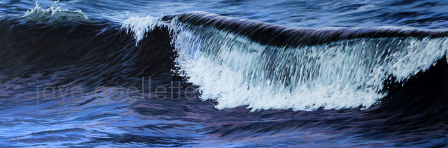 "Wave18, 17"" x 51"".    SOLD"